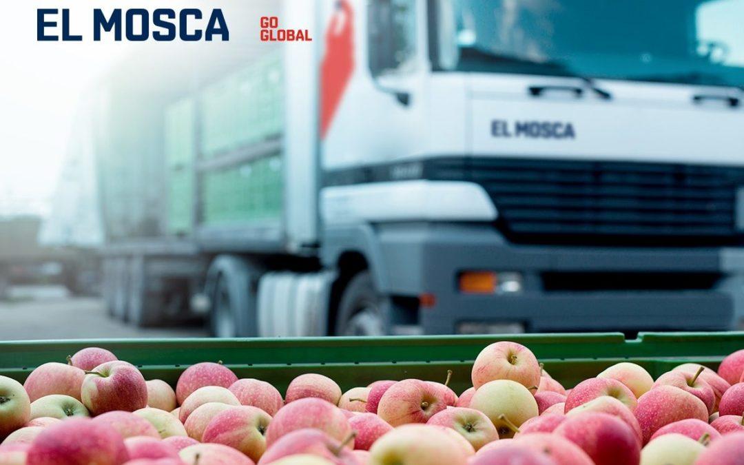 La exportación de Alimentos desde España